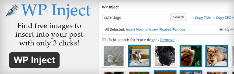 WP Inject