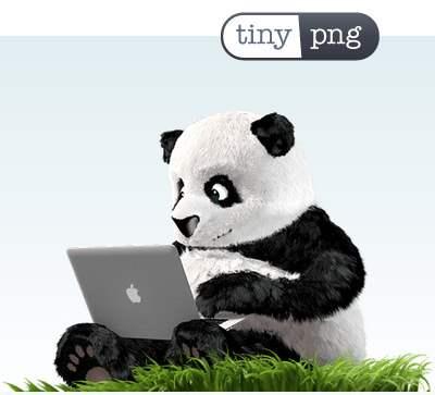 TinyPNG-Mascotte