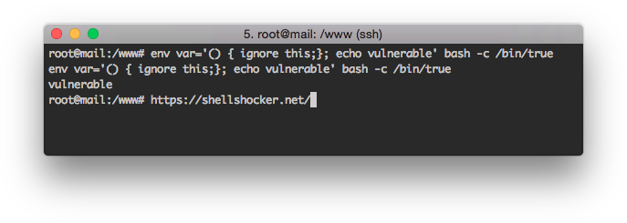 Bash ShellShocker