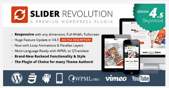 Vulnérabilité du plugin Slider Revolution