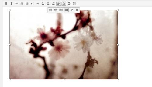 WordPress 4.1 - Edition en ligne des images
