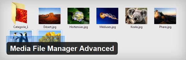 Media-File-Manager-Advanced