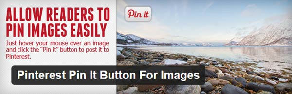 Pinterest Pin-It-Button For Images