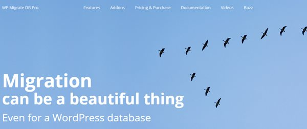 migrer votre installation WordPress avec WP Migrate DB Pro