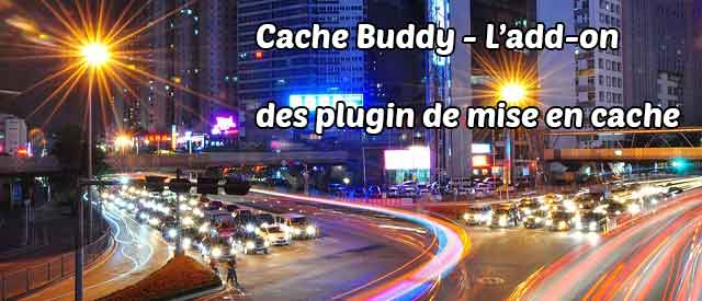 Cache Buddy Header