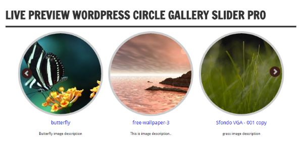 Circle Image Slider With Lightbox Preview