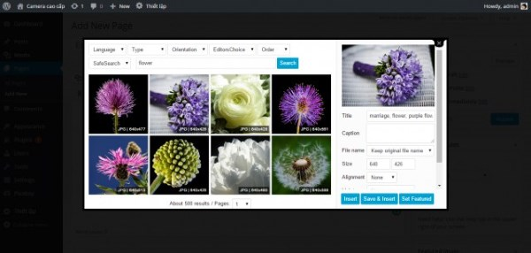 WP Pixabay Search And Insert