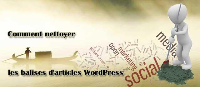 Comment nettoyer les balises d'articles WordPress