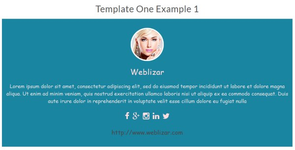 About WordPress Authors - Exemple 1