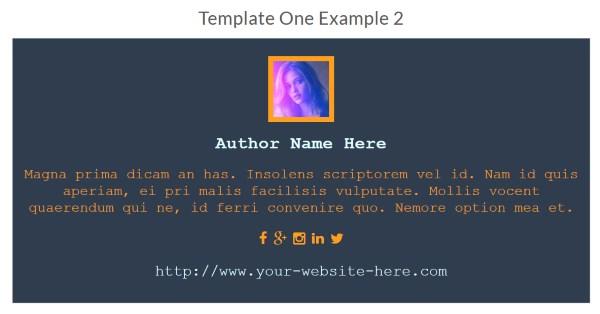 About WordPress Authors - Exemple 2