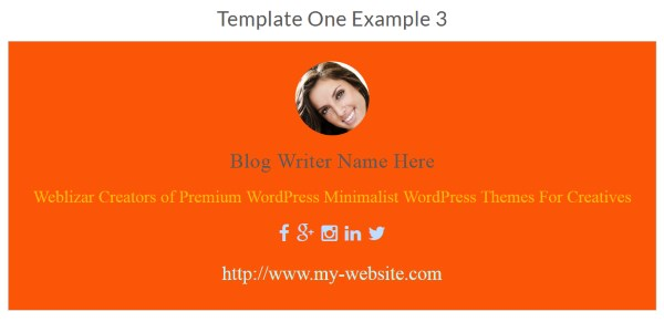 About WordPress Authors - Exemple 3
