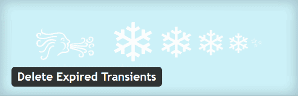 Transients WordPress - Delete Expired Transients