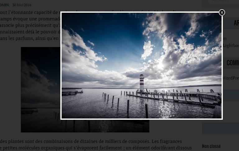 Exemple Zoom - Image Zoom