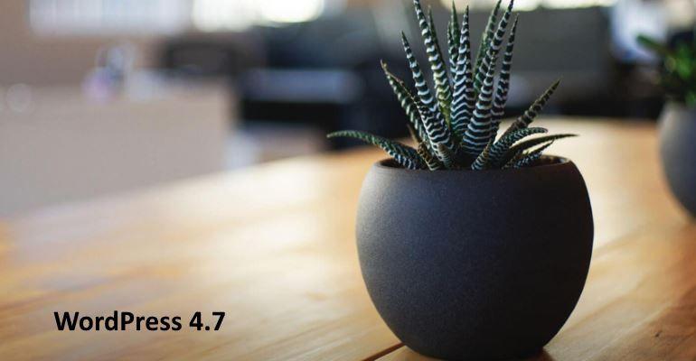 nouvelles fonctionnalités de WordPress 4.7 - Twenty Seventeen