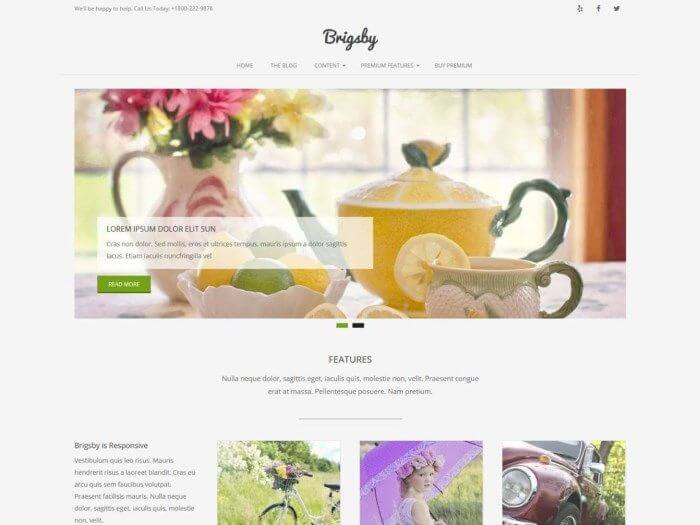 Les 10 plus beaux thèmes gratuits - Brigsby