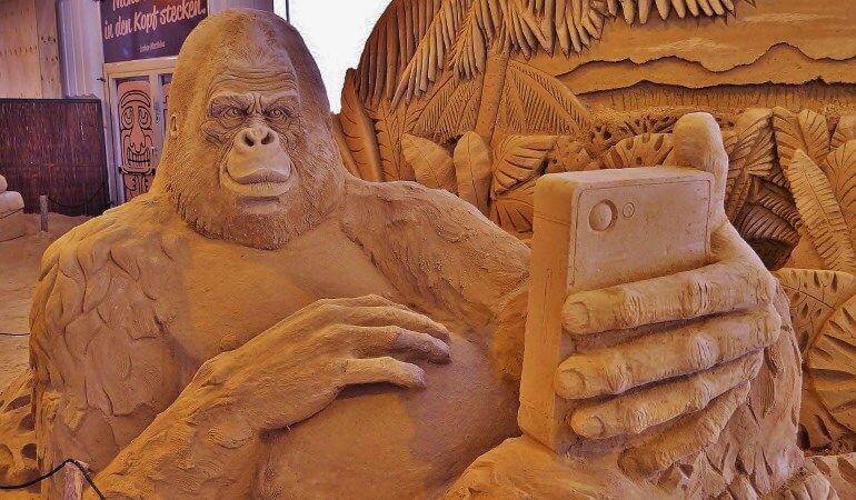 Compteurs sociaux et passage au HTTPS