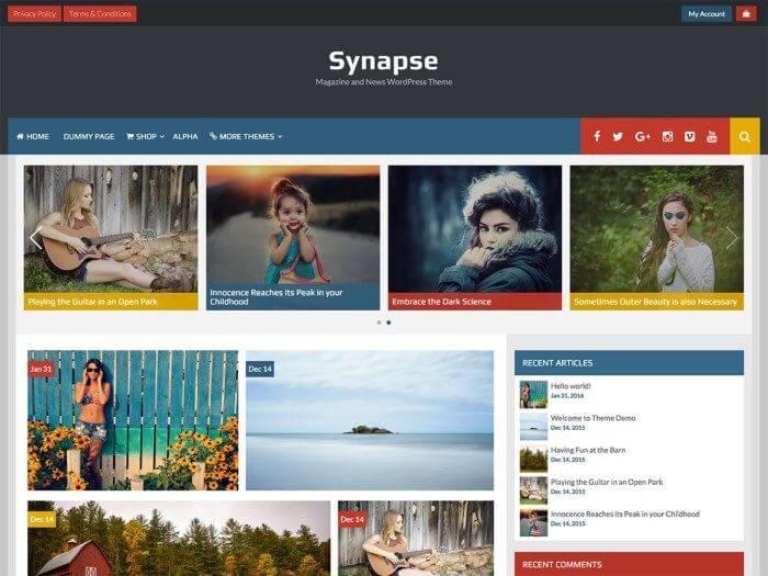 Les 10 plus beaux thèmes gratuits - Synapse